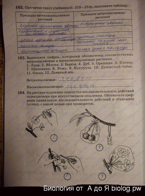 снисаренко класс тетрадь гдз биология рабочая 6
