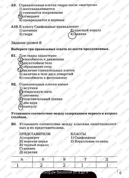ГДЗ от Путина 6 класс Информатика