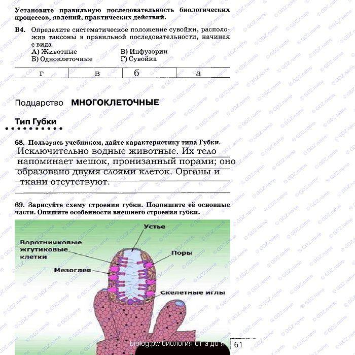 Решебник углубленный уровень по биологии 10 класс Захаров В.Б., Мамонтов С.Г. ФГОС