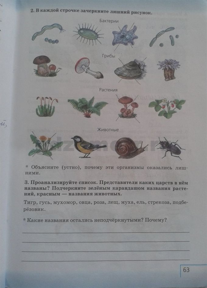 гдз по биологии 6 класс сонин плешаков рабочая тетрадь ответы