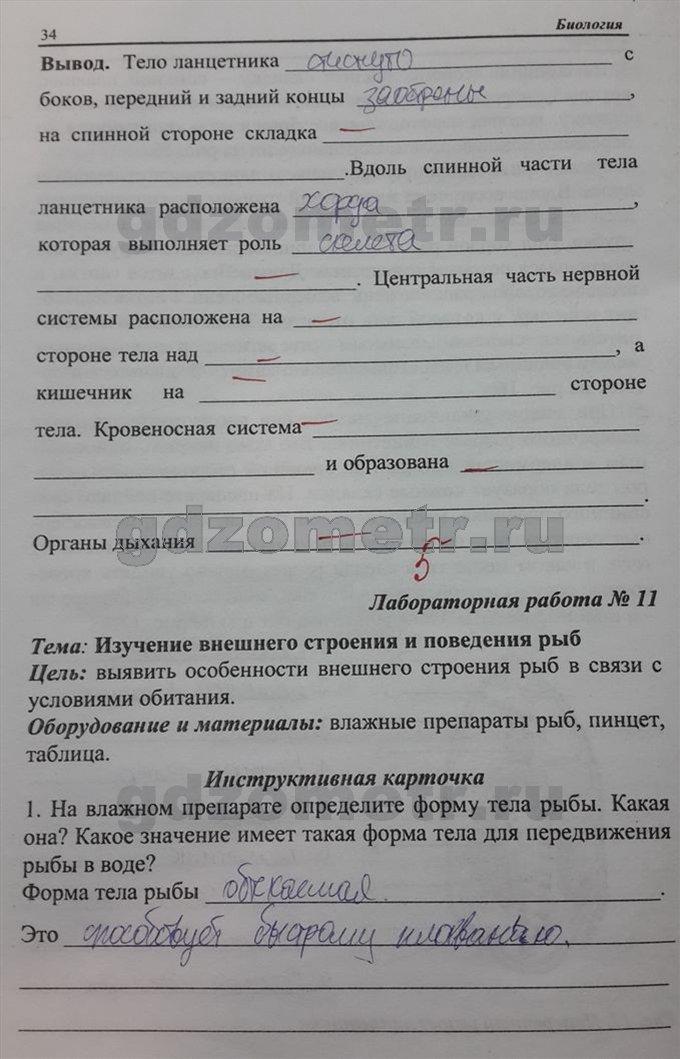 серебряков гдз класс на по русском 8 биологии балан
