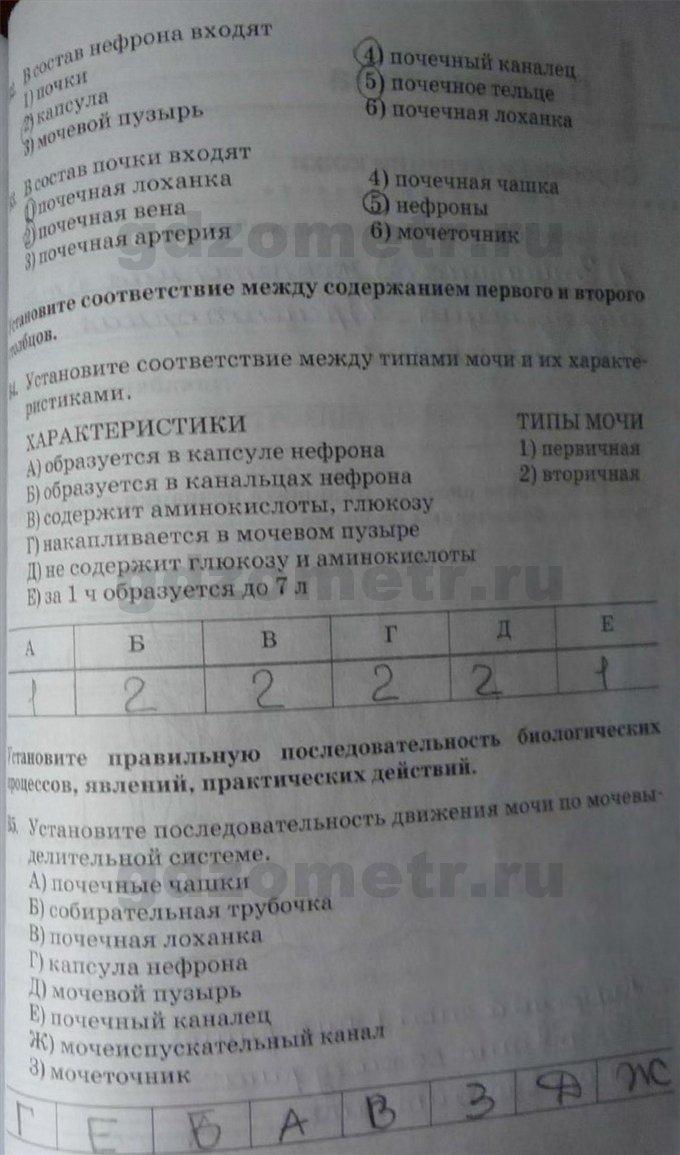 по сонина 9 биологии тетрадь гдз