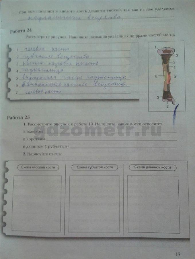 Биологии класс по на лабораторная жук темумайски работа решебник 8