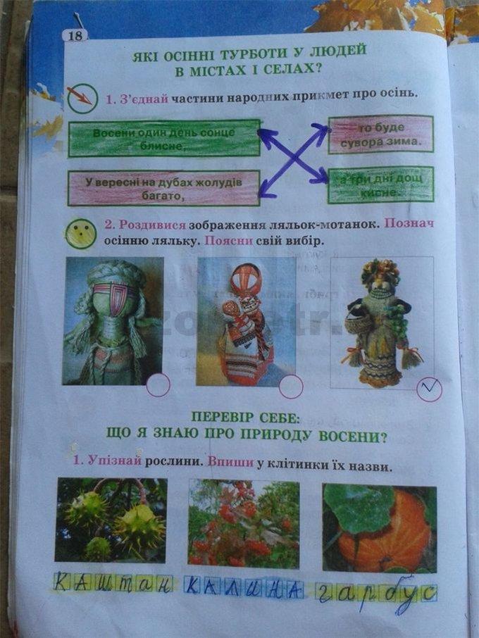 Гдз 2 Клас Природознавство Робочий Зошит Тетьоркіна Відповіді