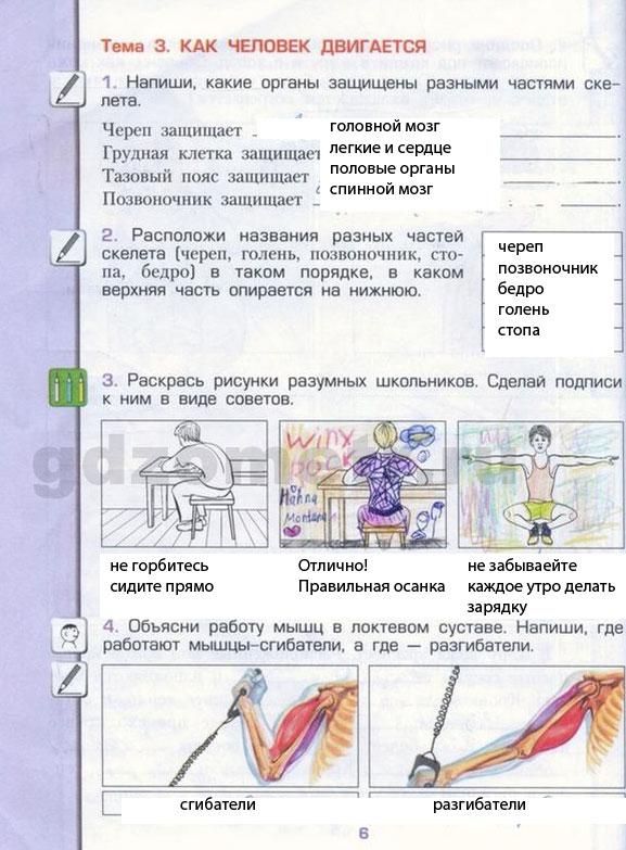 Как сделать Красную Книгу по окружающему миру во 2 классе?